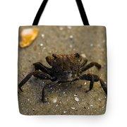 Curious Crab Tote Bag