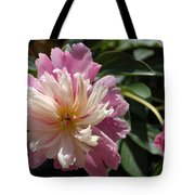 Dahlia Delight Tote Bag