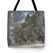 Dakota West In Winter Tote Bag