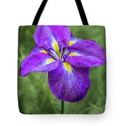 Daring To Stand Out By Tl Wilson Photography Tote Bag by Teresa Wilson