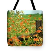 Day Lillies Tote Bag by Jeff Phillippi