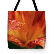 Daylily Dewdrops Tote Bag