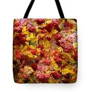 Days Of Autumn 18 Tote Bag