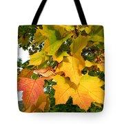 Days Of Autumn 24 Tote Bag