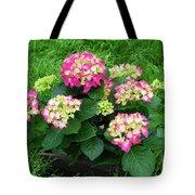 Decorative Floral Pink Hydrangeas C031619 Tote Bag by Mas Art Studio
