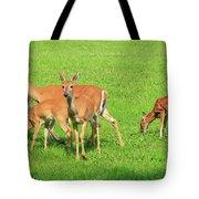 Deer Looking At You Tote Bag