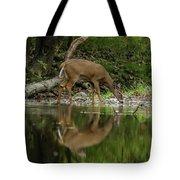 Deer Reflection Tote Bag by Dan Sproul