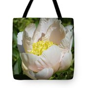 Delicate Pastel Peach Cupped Peony Blossom Tote Bag