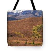 Denali Grizzly Tote Bag by Tim Newton