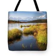 Denali Wonder Tote Bag by Tim Newton