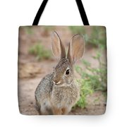 Desert Cottontail Rabbit Tote Bag