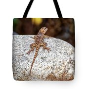 Desert Spiny Lizard H1809 Tote Bag by Mark Myhaver