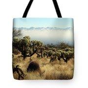Desert Winter 1 Tote Bag