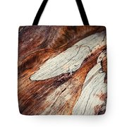 Detail Of Abstract Shape On Old Wood Tote Bag