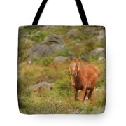 Digital Watercolor Painting Of Stunning Image Of Wild Pony In Sn Tote Bag