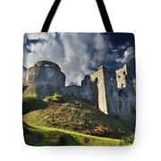 Dinefwr Castle 2 Tote Bag