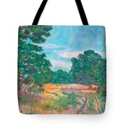 Dirt Road Near Rock Castle Gorge Tote Bag