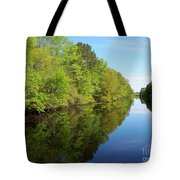 Dismal Swamp Canal In Spring Tote Bag