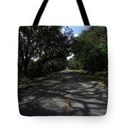 Dixie Highway In Micanopy Florida Tote Bag