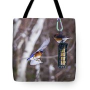 Docking Bluebird Tote Bag