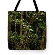 Dogwood Tree 2 Tote Bag