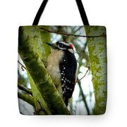 Don't Move Bird Tote Bag