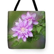 Double Clem Tote Bag