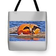 Double Crested Cormorant    Drying Wings         September        Indiana Tote Bag