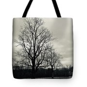 Double Life  Tote Bag