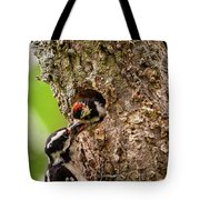 Downy Lunch Tote Bag by Jeff Phillippi
