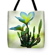 Dozen Buds Plus One Ant Tote Bag