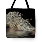 Dozy Crocodile Tote Bag by Elaine Teague