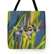 Dragonfly Perched By Pond Tote Bag