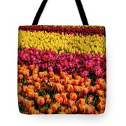 Dreaming Of Endless Colorful Tulips Tote Bag