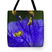 Dressed In Blue Jackets #2 Tote Bag