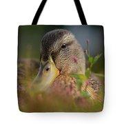 Duck 1 Tote Bag