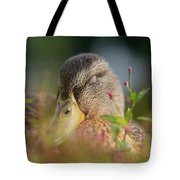 Duck 2 Tote Bag