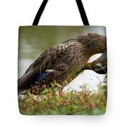 Duck 3 Tote Bag