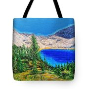 Duck Pass Tote Bag by Kevin Daly
