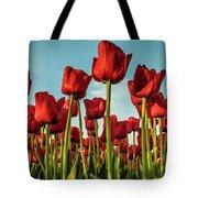 Dutch Red Tulip Field. Tote Bag