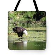 Eagle's Drink Tote Bag
