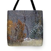 Early Winter On The Western Edge Tote Bag