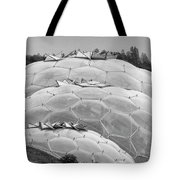 Eden Project Biome  Tote Bag