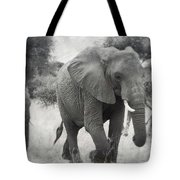 Elephant And Babies Tote Bag