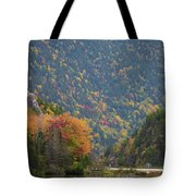 Elephant Head Autumn Tote Bag