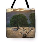 Elk Sunset Tote Bag