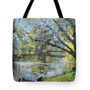 Ellicott Creek Park Tote Bag