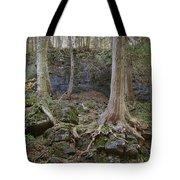 Elora 4 Tote Bag
