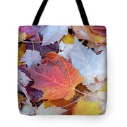 End Of Autumn Tote Bag by David Millenheft