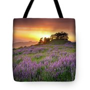 End Of Day Tote Bag by Jason Roberts